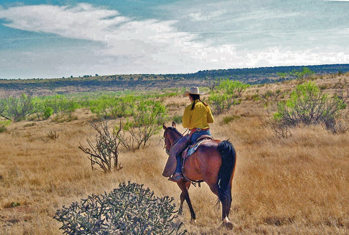 Been experimenting in photoshop elements with some of the ranch pictures.  Made me re-appreciate (is that a word??) the landscape around here. - Western Landscape – On A Chicken Wing And A Prayer